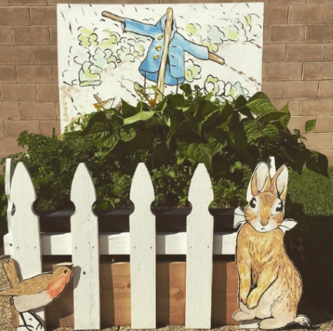 explore mr mcgregor s garden tale of rabbit paynesville