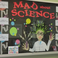 mad about science display