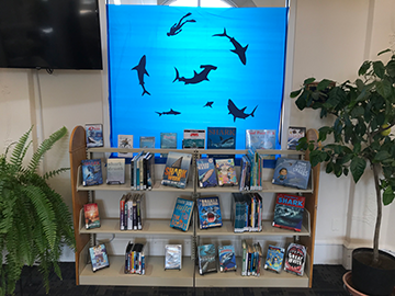 shark week library display