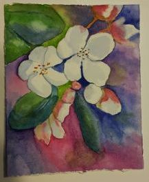 Picture of a watercolor of white flowers.